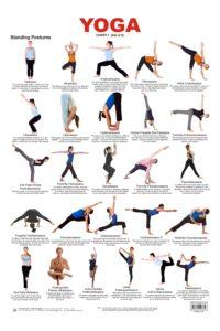 chart of basic yoga postures